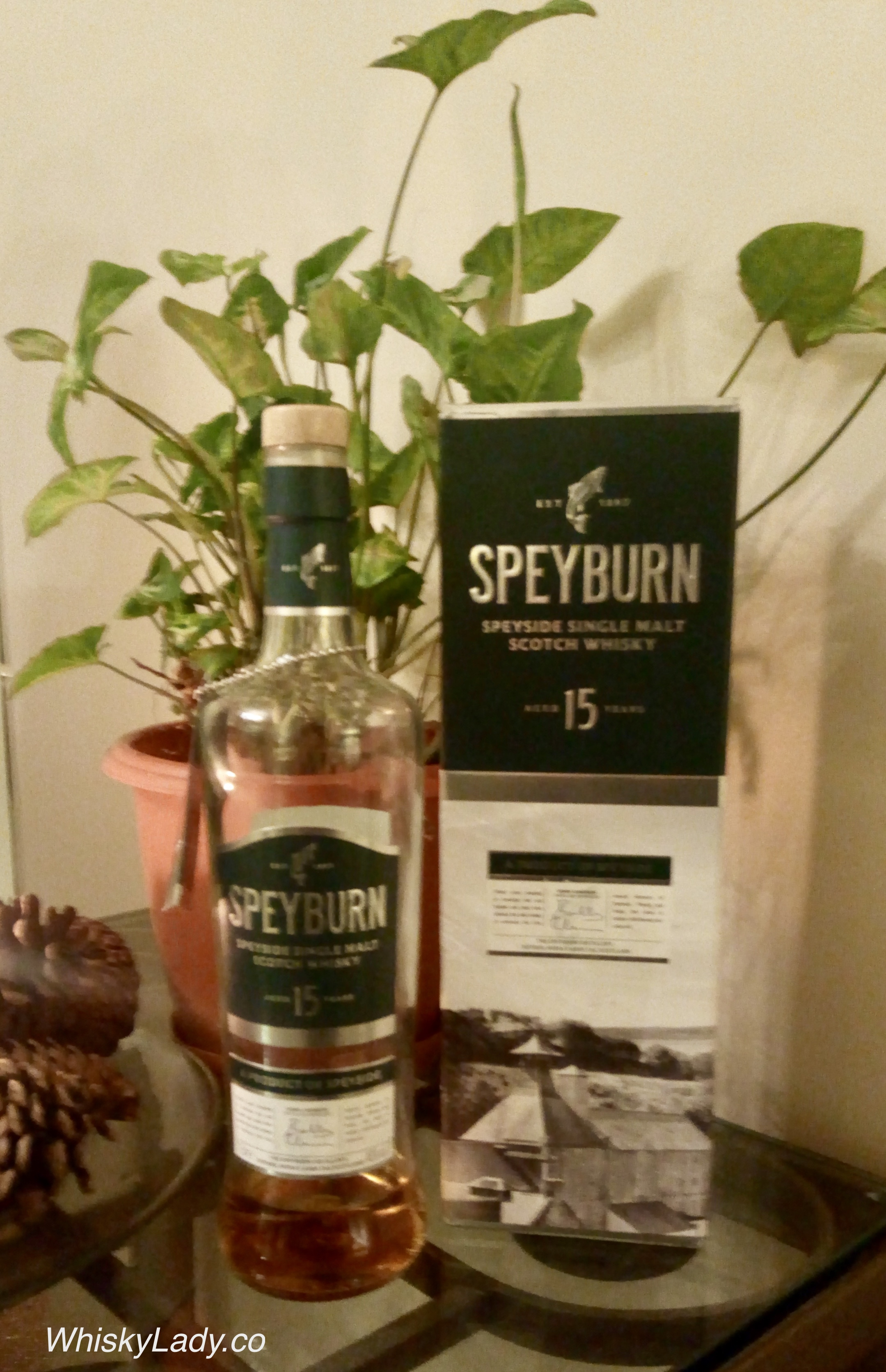 Speyburn 15 Year Old: An Evening With Stuart Harvey